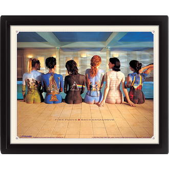 immagine 3D Pink Floyd - Back Catalogue, PYRAMID POSTERS, Pink Floyd